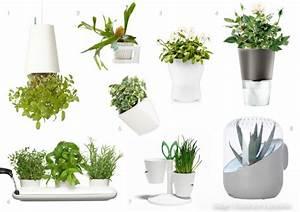 Support Plante Intérieur : univers creatifs design trouver pot sa plante ~ Teatrodelosmanantiales.com Idées de Décoration