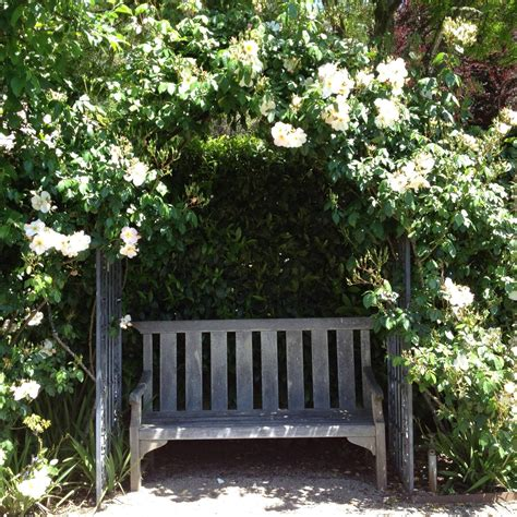 Garden Bench With Trellis by Garden Bench With Covered Trellis Landscape Ideas