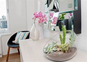 Tips and tricks for using plants in modern interior design for Interior decorating houseplants