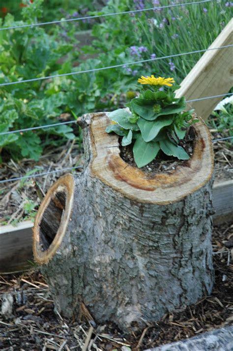 tree stump planters 10 diy planter boxes for gardening sober julie