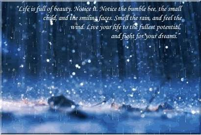 Beauty Notice Quotes Rain Quote Weather Fight