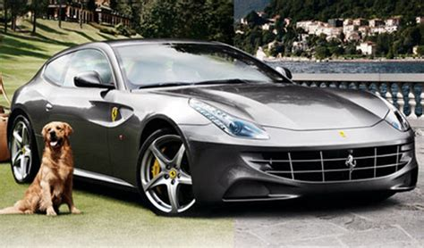 ferrari ff neiman marcus edition review top speed