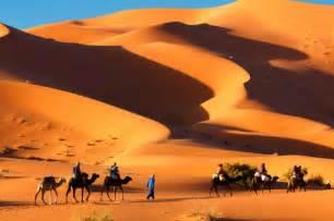 camel tents desert hotel morocco holidays desert tour
