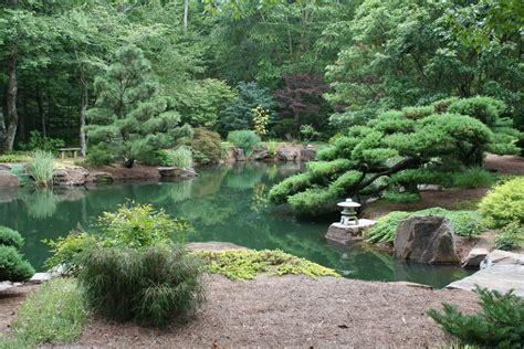 Garden Pond : Japanese Garden Pond