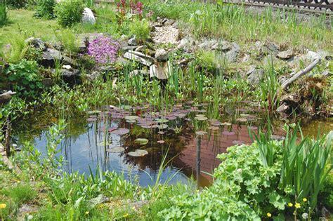 Natur Im Garten Revue