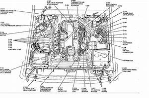 Diagram  2002 F150 4 2 Engine Diagram