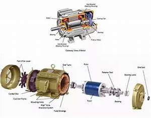 Inside Ac Motor