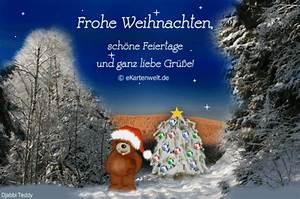 Schöne Weihnachten Grüße : djabbi teddy im verschneiten winterwald zu weihnachten ~ Haus.voiturepedia.club Haus und Dekorationen