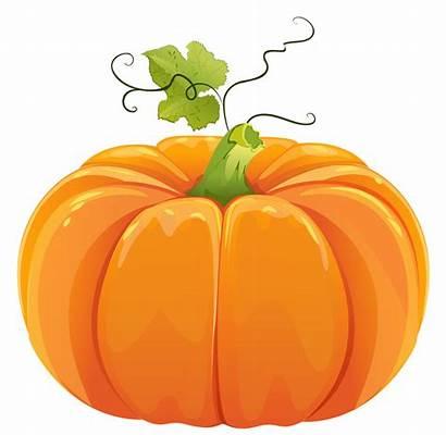 Gourd Harvest Clipart Transparent Webstockreview Announcements Ten