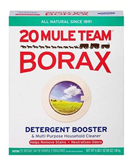 borax  fleas  natural flea control  landry detergent