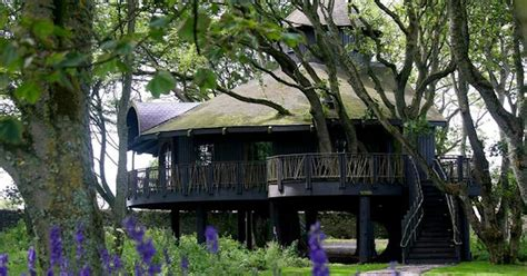 'europe's Largest Treehouse' Comes With A Celebrity