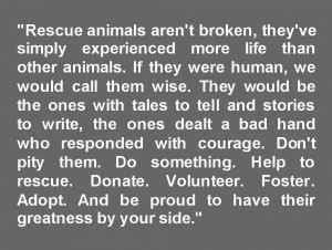 rescue dog poems  quotes quotesgram