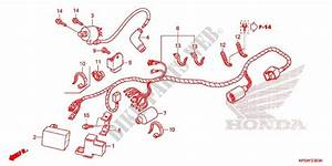 Wire Harness  Battery For Honda Crf 230 F 2015   Honda