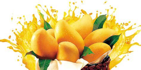 simple mango poster background material mango juice