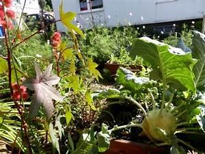 Garten Im September : ein hochbeet selber bauen anleitung f r effektives beet ~ Whattoseeinmadrid.com Haus und Dekorationen