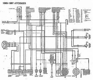 Wiring Diagram Honda Atc250es Bigred 1986 1987  61544