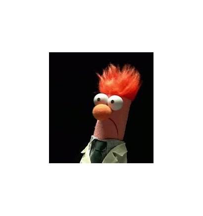 Beaker Muppet Giphy Gifs Animal Birthday Happy