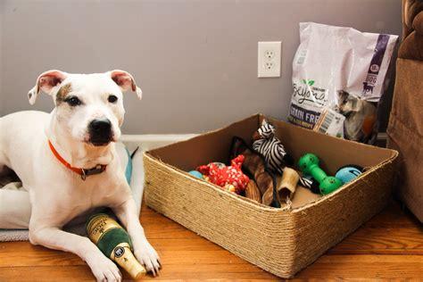 dog toy box diy dog toy bin simple  easy