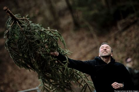 germany s annual christmas tree throwing chionships