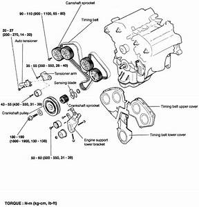 Diagram Timing Belt Carnival Diesel Turbo 2001