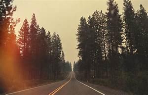 Wallpaper, Sunlight, Trees, Landscape, Forest, Nature, Sky, Road, Smoke, Evening, Morning, Mist