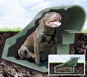 underground dog houses advantages and disadvantages With underground dog kennel