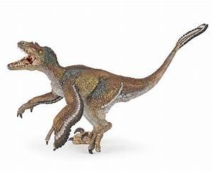 Papo 55055 Feathered Velociraptor Dinosaur Model Replica ...  Velociraptor