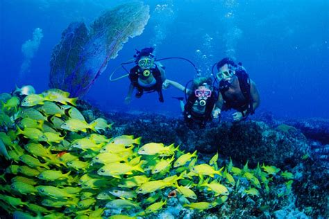 Discover Scuba Diving   Bonaire Tours and Vacations