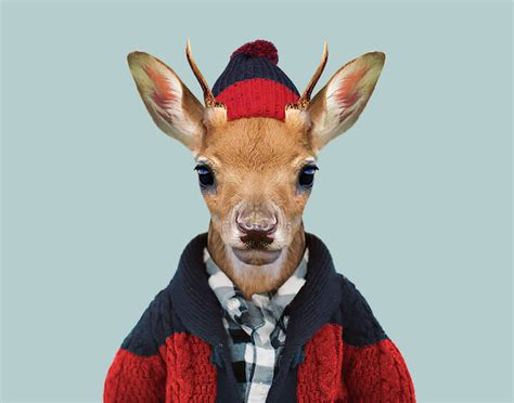 super cute animals dressed  humans portraits  yago partal