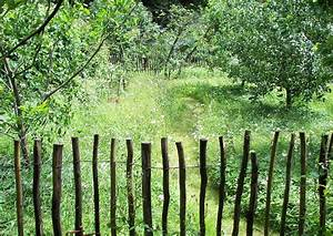 Kleiner Baum Garten : zwei drei oder mehrere apfelsorten auf einen baum ~ Lizthompson.info Haus und Dekorationen