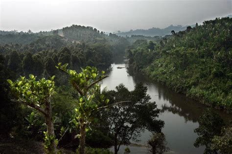 nigeria autostrada foresta ekuri land grabbing