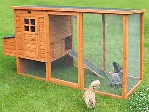 Comment Construire Un Poulailler En Bois