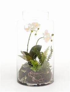 Orchideen Im Glas Dekorieren : phalaenopsis mini garten 40 cm orchideen kunstpflanze im ~ Watch28wear.com Haus und Dekorationen