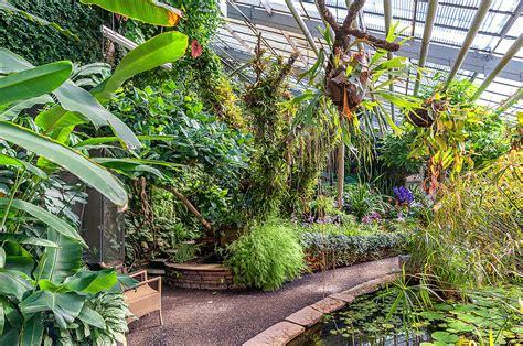 Botanischer Garten Genf öffnungszeiten by Karlsruhe Botanische G 228 Rten In Karlsruhe