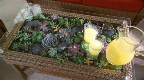 learn      terrarium coffee table diy