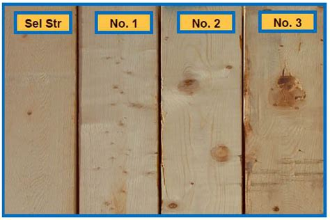 The One-stop Shop Guide To Lumber