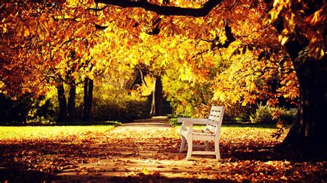 Autumn Wallpapers Hd by Hd 1080p Fall Wallpaper 79 Images