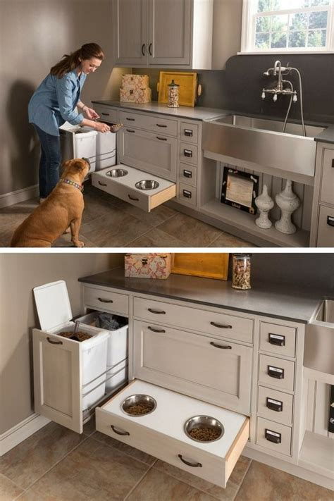 chien cuisin 25 best gamelle pour chien ideas on gamelle