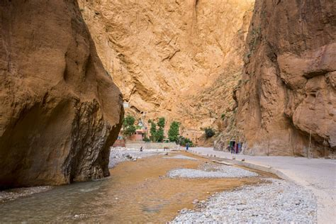 day trip  ouarzazate  dades gorges   rose valley