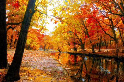 Fall Chrome Backgrounds chromebook wallpapers 89 images