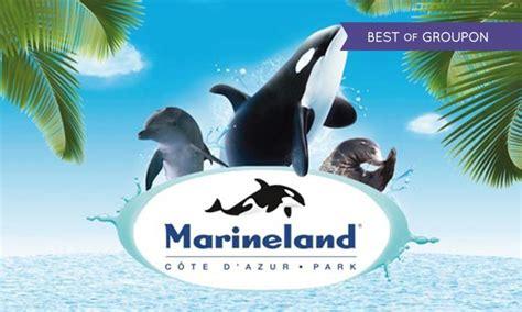 provence bureau marineland resort à antibes provence alpes cote d 39 azur