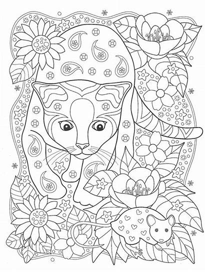Coloring Cat Anti Mouse Blank Stress Animal