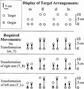 Movement Types Applied In This Study  Letter Codes Above The Sketch Of