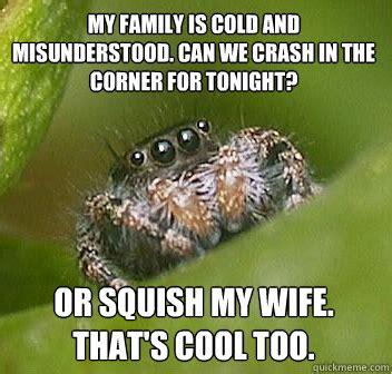 Cute Spider Memes - misunderstood spider on tumblr