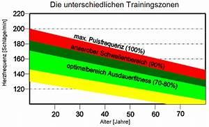 Trainingsbereiche Herzfrequenz Berechnen : training im richtigen takt die anwendung von herzfrequenz messger ten herzfrequenzmesser ein ~ Themetempest.com Abrechnung