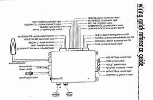 Viper 5902 Wiring Diagram