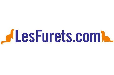 Assurance Habitation Lesfurets.com