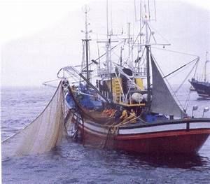 Barcos De Pesca Pictures