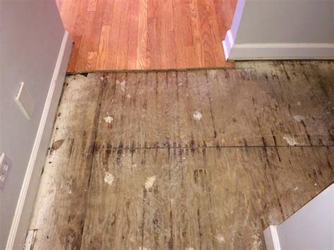 replacing hardwood floors with laminate replace these subfloors doityourself community forums