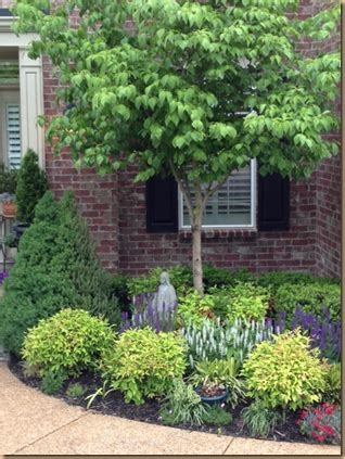 Garden Decorative Bushes by Small Front Yard Foundation Planting Evergreen Shrubs
